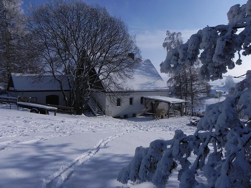 Miriquidi-Wintercamp – Natur-Ferienlager für Kinder und Jugendliche