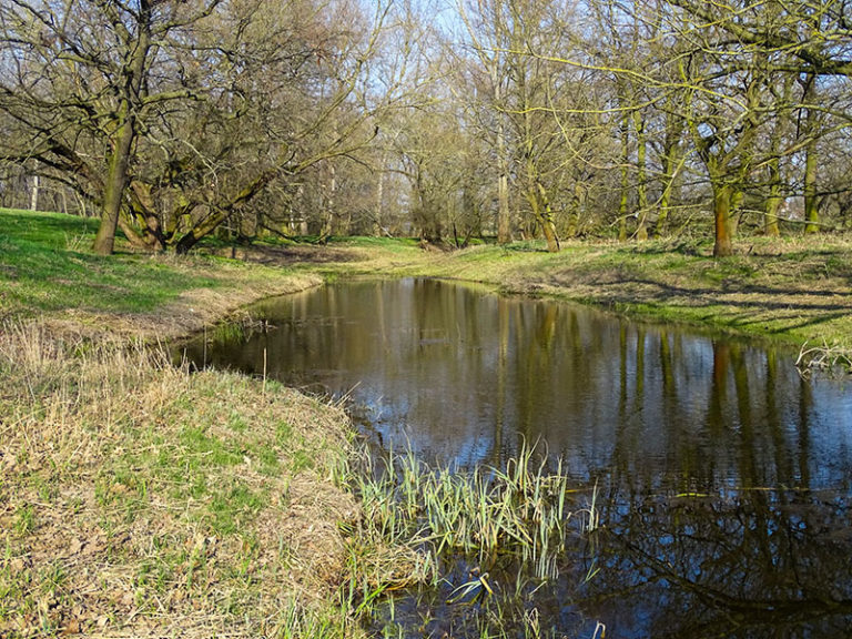 Altelsterarm Döhlen_April 2018_small