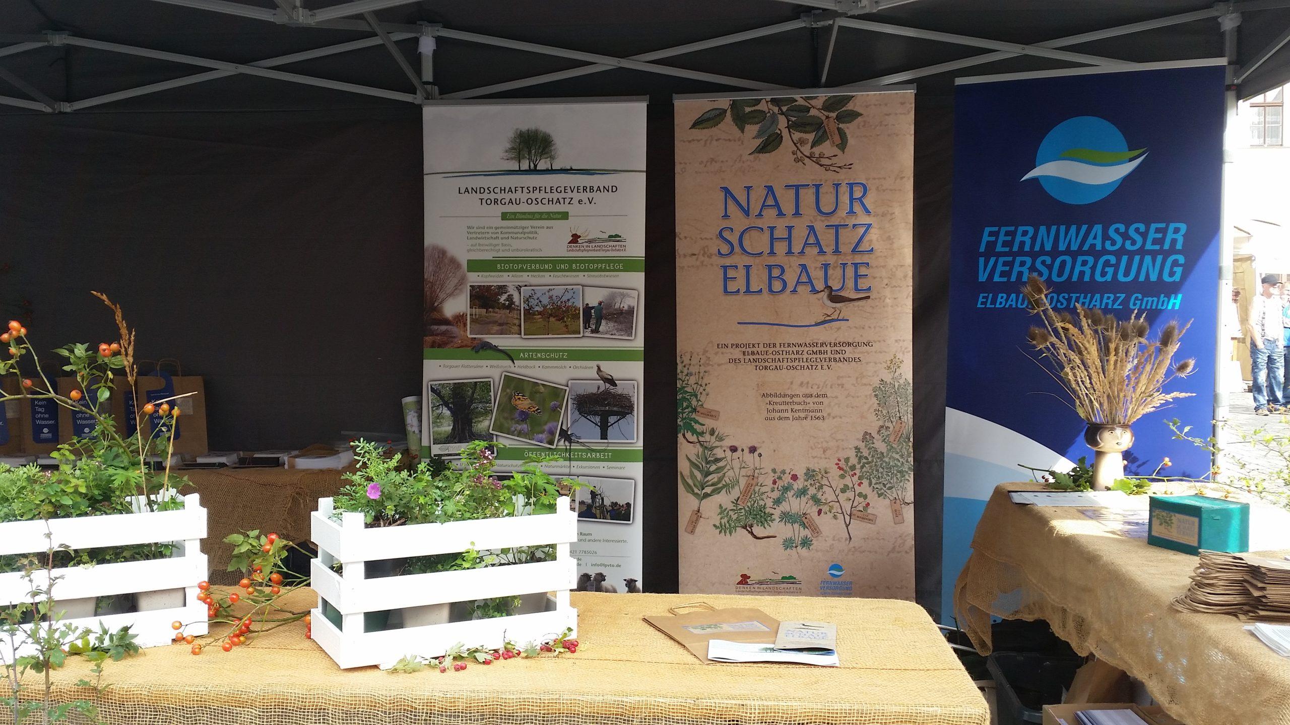 """Informationsstand zum Mitmach-Projekt """"Natur-Schatz-Elbaue"""""""