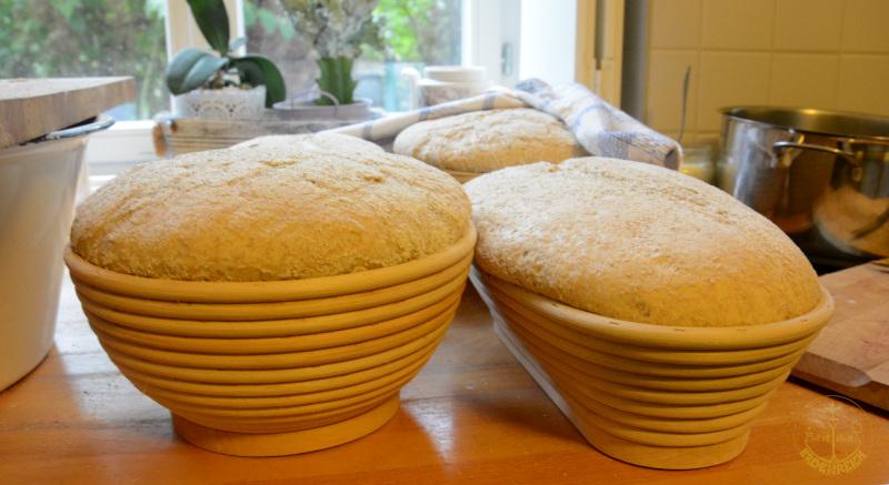 Brotbacktag zur Einweihung des neuen Backofens