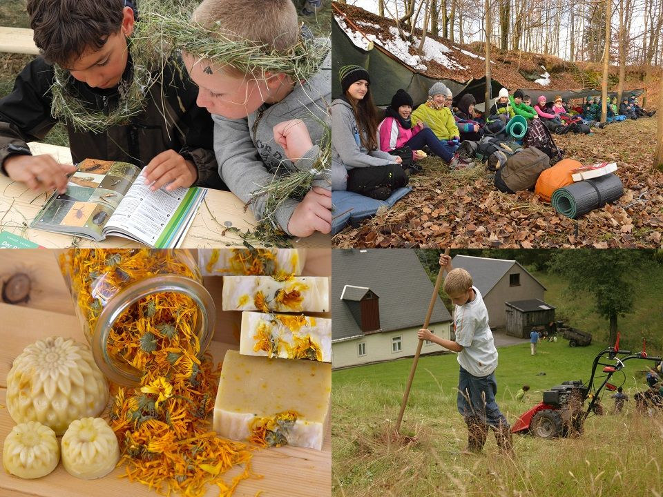 Naturforscherclub Juli – Bergwiesenpflege